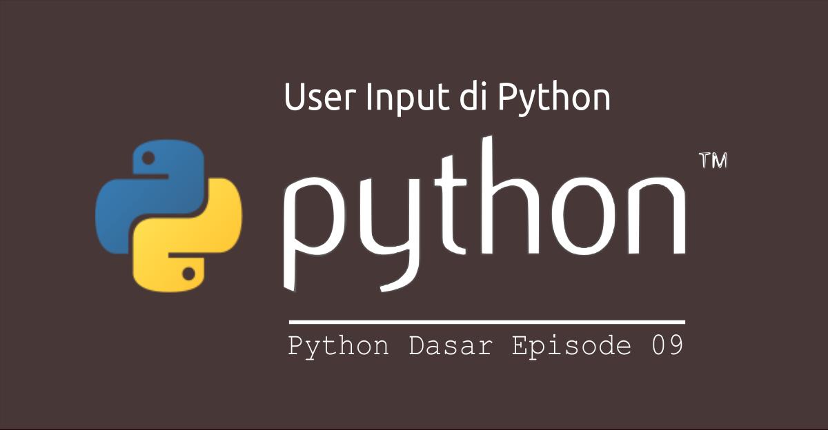 user input di python