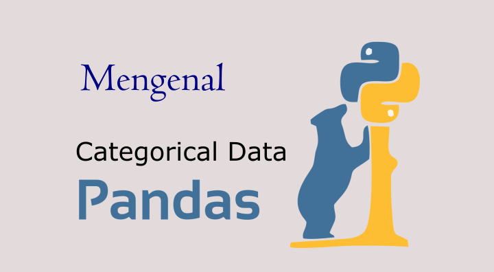 python pandas categorical data