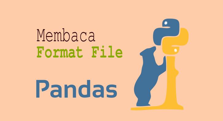 python pandas format file